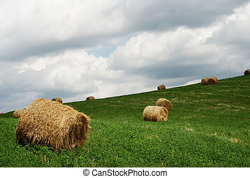 Hay bales in a green field under grey stormy sky