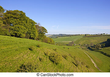 yorkshire wolds pasture - a scenic hillside meadow in the...