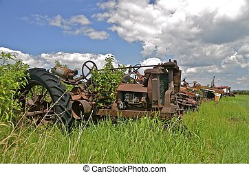 Old tractors in the weeds