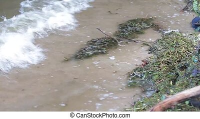 background waves dirty water from ukraine.