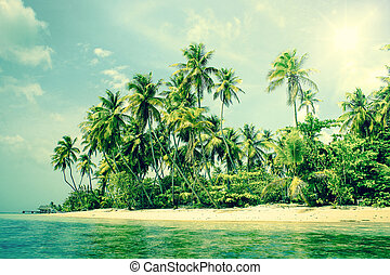 Tropical island with palm trees on the beach - High...