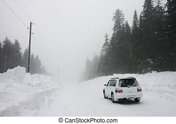 Car on a winter road