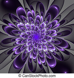 Beautiful lush violet flower on gray background. Computer...