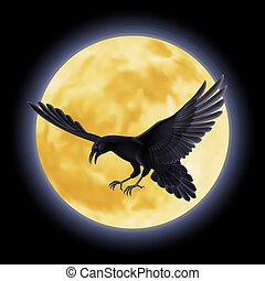Black raven - Black crow soars on the background of a full...