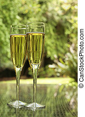 Champagne - Two champagne glasses bathed in green light on a...
