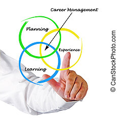 Diagram of career management
