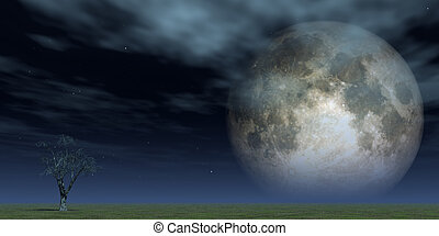 full moon - lonely tree at green field and full moon - 3d...