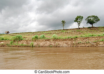 Eroded cut bank of river