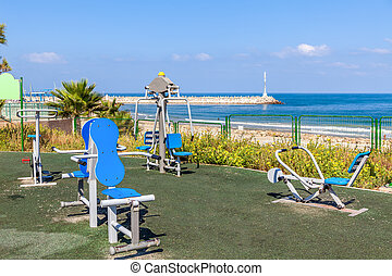 Public fitness equipment on promenade.