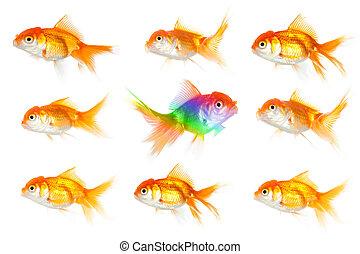Individuality thinking