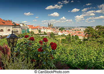 Prague - The View on the Prague's gothic Castle ,the city...