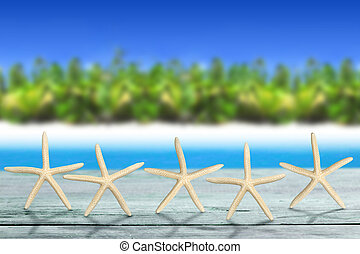 tropical luxury - five sea stars on wooden table in tropical...