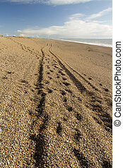 Track, wheel ruts on the Chesil Beach. - Light and shadow,...
