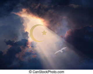 Peace - White Bird in sky with Islamic Cresent