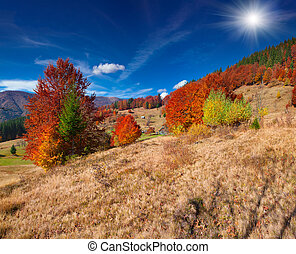 Colorful autumn landscape in the mountain village....