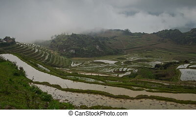 Foggy rice terraces in Sa Pa timelapse - Sa Pa, is a...