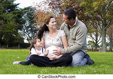 embarazo, -, embarazada, mujer, familia