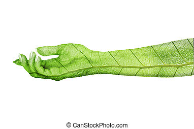 Eco concept. Hand of nature