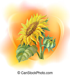 Sunflower background, oil painting flower