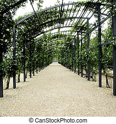 Garden pergola - Shaded path under garden pergola of white...