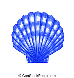 Scallop shell - Watercolor illustration of Scallop shell on...