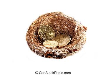 Money in nest, gold dollar coins