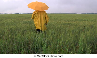 Farmer waiting for the rain in a wheat field - Farmer...