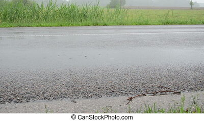 asphalt rainfall water - car pass asphalt road in rain and...