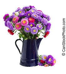 aster flowers - fresh aster flowers bouquet in blue pot...