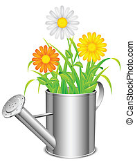 Watering can and flowers. - Daisy flowers and grass growing...