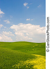Flowered Tuscan Landscape - Beautiful spring flowered...