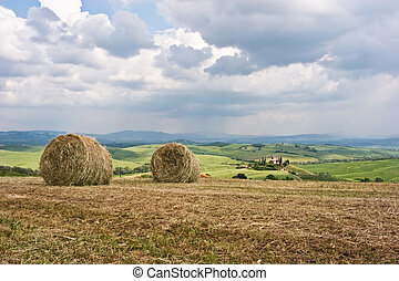 Hay Bales on Tuscan Landscape - Hay bales on rural...