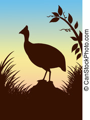 guinea fowl - illustration, silhouette of a guinea fowl...