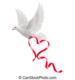 Dove with red ribbon in the white background
