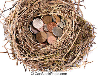 nest egg - saving pennies for the future in a nest egg...