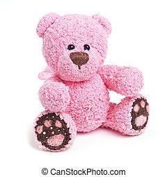 clásico, teddy, oso