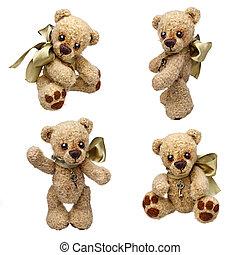 teddy, oso, clásico, vendimia, estilo, aislado,...