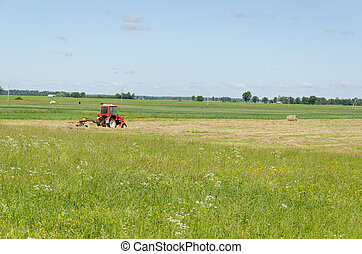 Red tractor ted hay dry grass in agriculture field