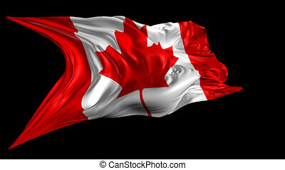 Flag of Canada - Beautiful 3d animation of Canada flag with...