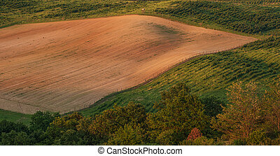 Beautiful hilly landscape, field - top view