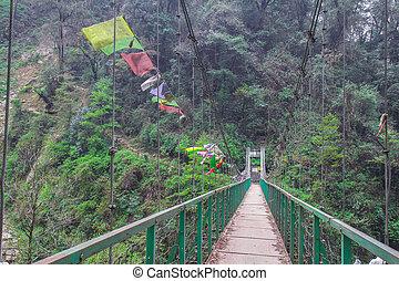 bridge - Bridge of Kanchenjunga Nation Park . That is trail...