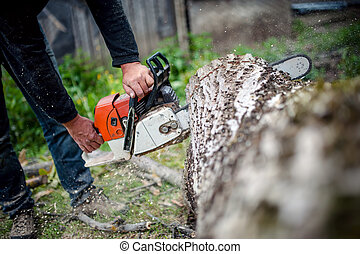 man with gasoline powered chainsaw cutting fire wood from trees