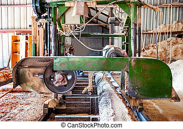 industrial wood production factory - bandsaw sawmill