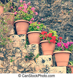Flowers in the pots, vintage look
