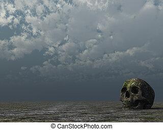 rotten skull in desert and cloudy sky - 3d illustration