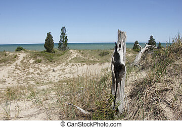 Sparsely Vegetated Sand Dune Overlooking Lake Huron - Pinery...