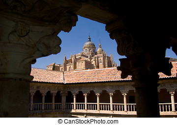 Cathedral of Salamanca from The Las Due�as convent....