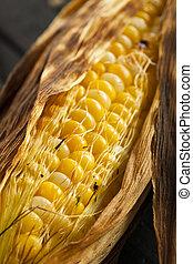 asado parrilla, maíz, Mazorca,  homade