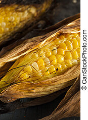 Homade Grilled Corn on the Cob on a Background