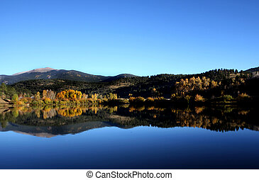 Reflection of trees on a Lake - Colorado Lake with the...